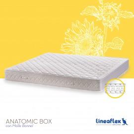 Anatomic Box